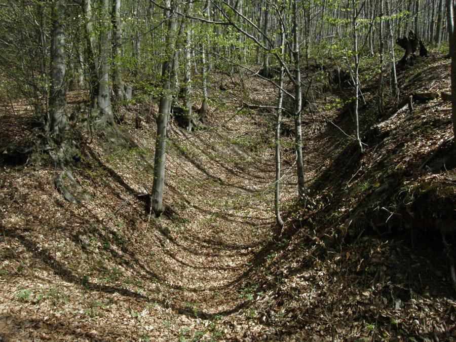 Chvojnica, Furststollen, Slovensko